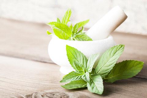 Lekovite biljke - fitoterapija