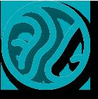 Služba otorinolaringologije Opšte bolnice  MEDIGROUP  bavi se dijagnostikom i lečenjem bolesti uha, grla i nosa kod dece i odraslih.